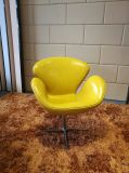 Cadeira Home do lazer do vidro de fibra da mobília (EC-024)