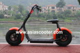 1000W 48V 12ahのリチウム電池の電気Citycoco様式のスクーター