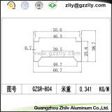 L'extrusion/aluminium en aluminium profile la vue transversale