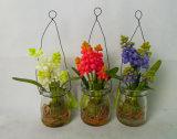 Plantas de cristal hermosas del tarro en lirio de los valles del blanco de la botella de leche