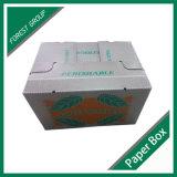 Flexográfica Impreso corrugado Caja del cartón brillante de cera (FP7009)