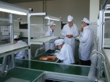 305W Polycystalline Silikon-Solarbaugruppee für Haushalts-Gebrauch