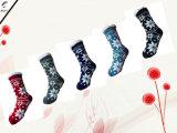 Quattro generi di calzini lavorati a maglia donne di colore