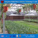 中国の専門のマルチスパンの農業の温室