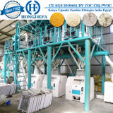 トウモロコシフライスタンザニア市場(50トン/ 24時間)