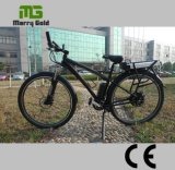 Grosses Rad das 28 Zoll-Pedal unterstützte elektrisches Fahrrad