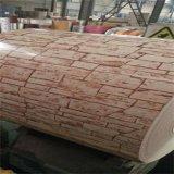 Prapainted galvanizou a largura de aço PPGI da bobina 700-1250mm para a grão de madeira