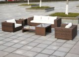 Conjunto tejido a mano fabuloso bien de los muebles del jardín de Furnir T-061