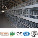 Cage de grilleur de matériel de ferme avicole pour la ferme de poulet