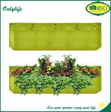 Onlylife 유일한 디자인 다채로운 수직 펠트 벽 정원 재배자