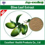 Estratto verde oliva naturale del foglio con oleuropeina e Hydroxytyrosol