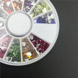 젤 매니큐어 매니큐어 부속품 Pedicure UV 끝을%s 못 예술 훈장 1.5 mm 12 색깔 모조 다이아몬드 3D 못 훈장