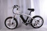 20 인치 뚱뚱한 타이어 산 전기 자전거 (OKM-1335)