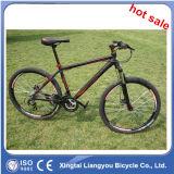 La aleación de aluminio más caliente de la venta se divierte la bicicleta de la montaña, bici de montaña en declive