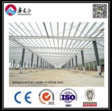 Taller de la estructura de acero del diseño de la construcción (BYSS011901)