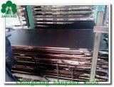WBP Kleber-Shuttering Furnierholz