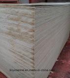 Núcleo de Combi, madeira compensada do vidoeiro para a classe da embalagem C/D