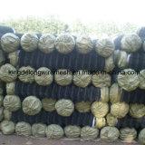 Покрынная PVC гальванизированная сетка звена цепи