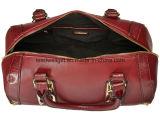 도매 주문 가장 새로운 형식 여자의 핸드백, 유럽 여자 클러치 숙녀 고아한 핸드백