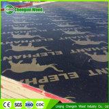 Het Chinese Concrete Triplex van de Bekisting/Shuttering/het Triplex van de Bouw dat naar Rusland wordt uitgevoerd
