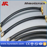 Nylon Pipe/PU Pipe/Nylon Spiral Hose/PU Spring Hose/Brake Hose e Assembly