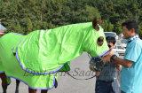 Ensemble d'exposition de coton, couverture de cheval, couverture de cheval, couverture de coton (NEW-25)