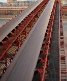 Corda de fio de aço para a correia transportadora