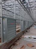 ' ventilatore di scarico aperto della serra della centrifuga 50