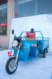650W Cargo Carrige Tricycle
