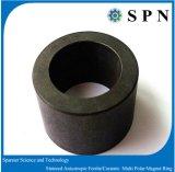De permanente Ringen van de Motor van de Magneet van het Ferriet Anisotrope Veelpolige