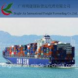 Fret maritime de remorque de transport d'expédition de Chine dans le conteneur de l'Amérique latine 20/40FT