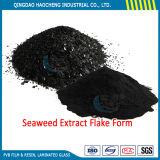 競争価格のプラント栄養素の食糧のための溶ける海藻エキスの粉
