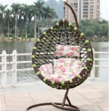Oscilación al aire libre de la fábrica cromática, muebles de la rota, silla colgante del huevo de interior (D017)