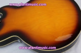 빈 바디/두 배 F 건강한 구멍/Afanti 일렉트릭 기타 (AES335-6)