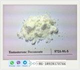 Testosterona Decanoate CAS: 5721-91-5 polvo de Deca de la testosterona