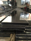 Roestvrij staal In reliëf gemaakte Pijp (304)