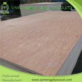 ポプラおよびHardwood Core 12mm Commercial Plywood Fromリンイー
