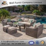 Disposizione dei posti a sedere profonda buona del vimine 6PC di Furnir Wf-17080