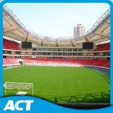 Kunstmatig Gras, het Gras van de Voetbal, het Tapijt van het Gras (PD/SM50F1)