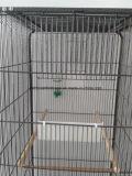 Gabbia del pappagallo della gabbia dell'animale domestico della gabbia di uccello del metallo di alta qualità grande