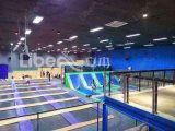 CE caldo Approved Cheap Price di Design della memoria di Indoor Trampoline