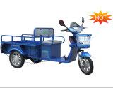 Triciclo elétrico da carga da pessoa idosa do modelo novo (DCQ100-04F)