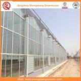 日よけシステムが付いている花かフルーツまたは野菜栽培のガラス温室