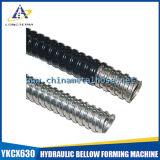 Double conduit verrouillé en acier de métal flexible