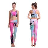 In voller Länge Nylonspandex-Yoga Sports Strumpfhosen/Gamaschen der Hosen-Frauen