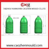 Processo di soffiatura in forma di plastica della bottiglia olio/dell'animale domestico in Huangyan
