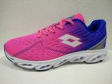 女性の軽い通気性の網の偶然の動揺靴の履物