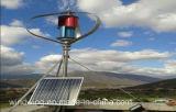 Moulin à vent vertical à nouvelle énergie de 400 W à haute efficacité (200W-5KW)