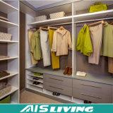 De kleurrijke Elegante Kast van de Garderobe in Eenvoudige Stijl (ais-W73)