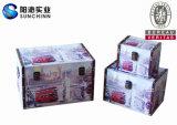 現代様式および一義的なデザインの流行の木箱